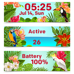 Hawaii Time